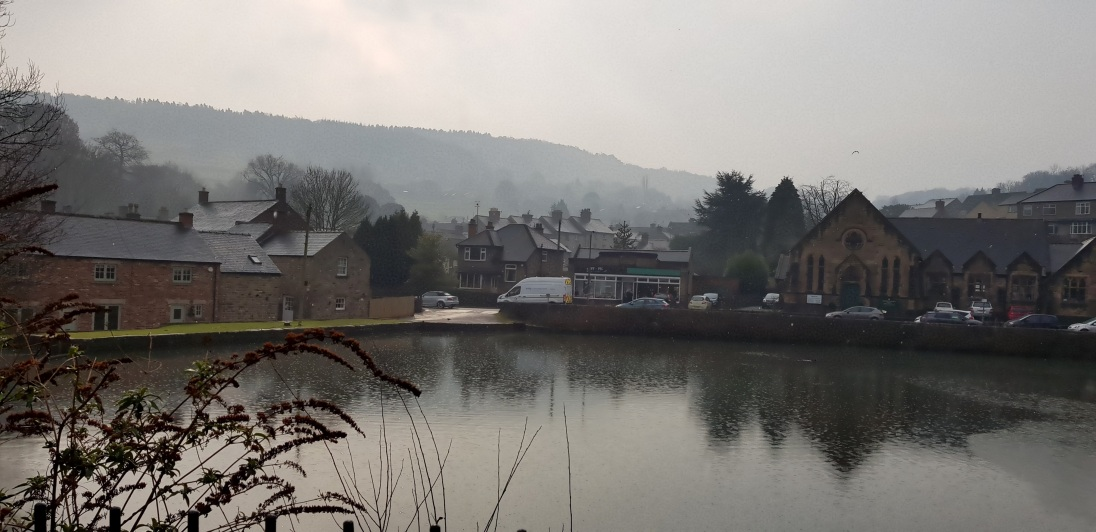 The Mill Pond on a rainy February day.